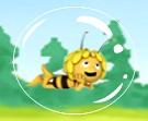 Arı Maya Baloncukları