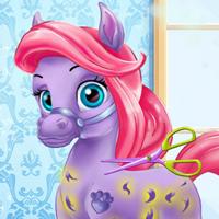 Ariel'in Ponysi