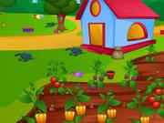 Betty'nin Çiftliği
