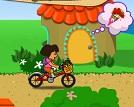 Çiçekçi Dora
