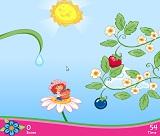 Çilek Kız Meyve Toplama