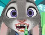 Judy Diş Bakımı
