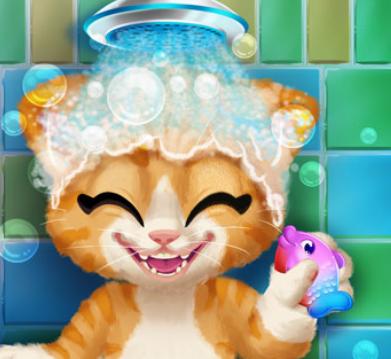 Kedi Temizleme