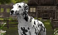 Köpek Simülatör