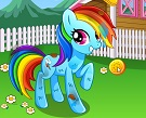 My Rainbow Pony Bakımı