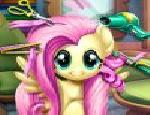 Pony Kuaför