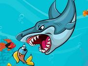 Şişman Köpek Balığı