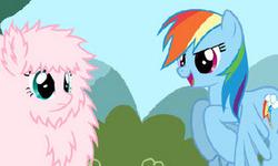 Tatlı Ponycik Yarış