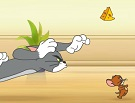 Tom ve Jerry Yakalama