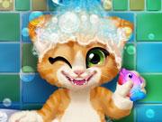 Yavru Kedi Yıkama